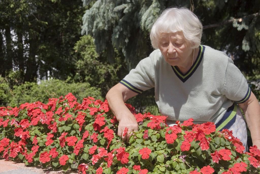 a grandma gardening